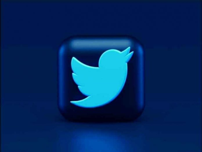 Twitter Blue New Features